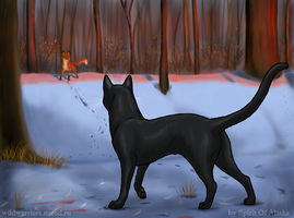 Hollyleaf's Story. Ch. VI by Spirit-Of-Alaska