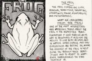 Animal Totem Card: The Frog by tobys-brain