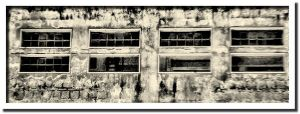 The Building - rep. A2 by PAMDavi