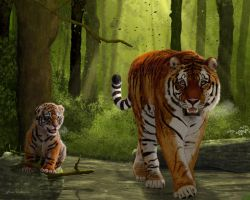 Tigers in Siberian Forest by JaneEden