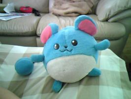 My Marill plushie XD by MarillMatey