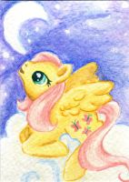 ATC Moonlight Fluttershy by rayechu