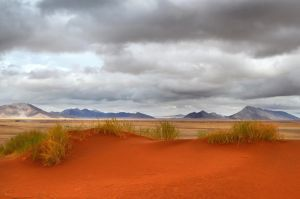 Red Dunes I by suffer1