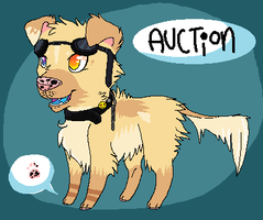 Character Auction! (Points) CLOSED by Sliced-Penguin