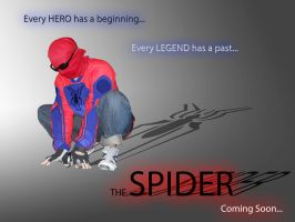 Along Came The Spider by skysoul25