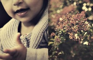 pretty by Blurry-Photography
