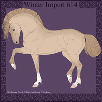 Winter Import 614 by ThatDenver