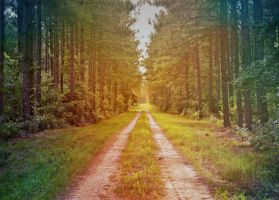 There Is Always A Way by suezn