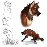 Wolf Character Concept by Neovirah