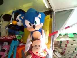 Sonic Toy Prize at the Fair by DerpyDash64
