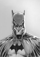 Batman II by chatoyantes