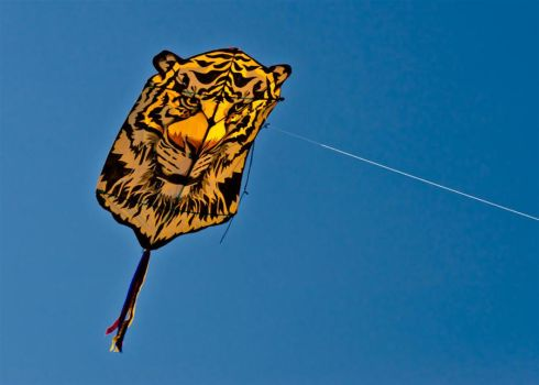 Fests: Kites 01 by letTheColorsRumble