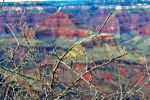 Grand Canyon 139 2015 by Moppet-Smiles