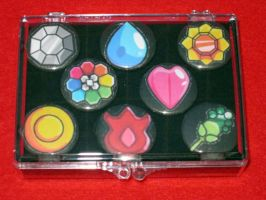Pokemon Gym Badge Display 1 by PaperCadence