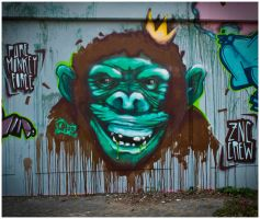 23-04-2010: PureMonkey by Dhos218