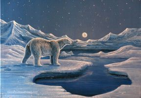 King of the Cold by Vanory