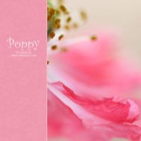 Poppy. IV by AlexEdg
