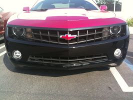 Black and Pink Camaro Front by BloodThirstyWolfGirl