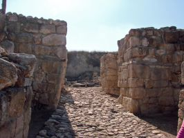 Gates of Megiddo by Irie-Stock