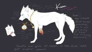 Kami reference by Rinermai