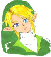 Legend of Zelda: Link by Hane-to-Yume