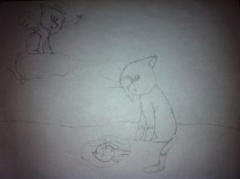 Spottedleaf x Firestar drawing (unfinished) by Ask-Mosspath