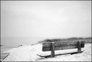 the bench by Tom-Ripley