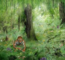 Tiger In The Jungle by yoklmn