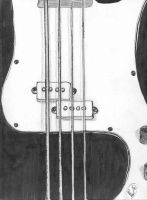 The Almighty Bass Guitar by bassists