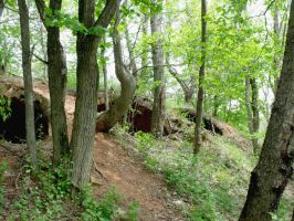Coke Ovens 1 by MorganCG
