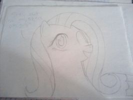My Fail Attempt At Fluttershy by PaulLuvr