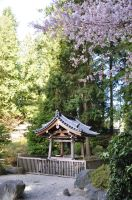 Shrine in Spring by Otone