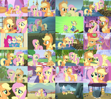 AppleShy/FlutterJack Collage by ThePoneSenpai