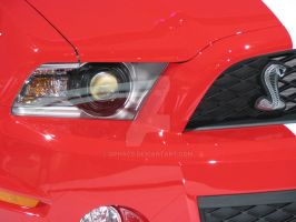 2010 Shelby GT500 - Nose 2 by Qphacs