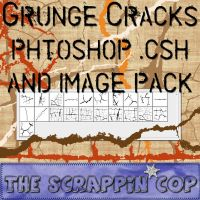 Grunge Cracks Custom Shapes by debh945