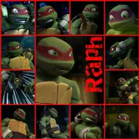 TMNT:: Raph: collage by Culinary-Alchemist