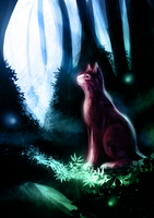 .:Night kitteh:. by Roxo89