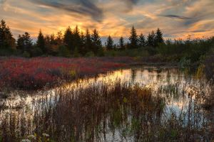 Autumn Dolly Sods Sunset II by somadjinn