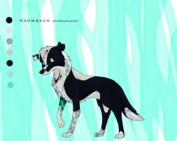 .reference-sheet. by Snowback