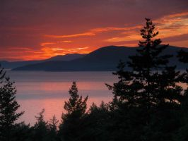 Chuckanut Drive sunset by LarryRaisch