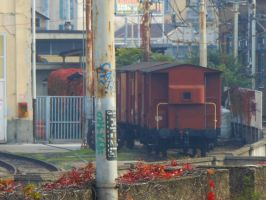 Historic freight wagons by GladiatorRomanus