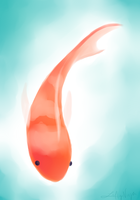 Koi by LeftyNinja