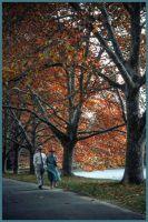 A walk In The Park by AdamsWife