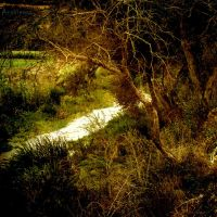 ByTheRiver II by AnaViegas