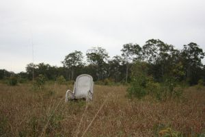 Chair in Field2 by newdystock