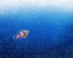 clown fish by Disbag