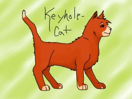 Practice by Keyhole-Cat