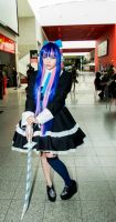 MCM Expo May 2014 106 - Stocking by cosmicnut