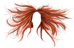 Phoenix Hair - PNG by Thy-Darkest-Hour