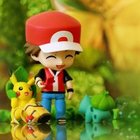 Meeting Bulbasaur by pokemonphotography